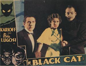 blackcat03.jpg